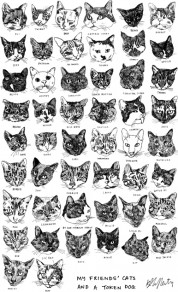 01tea-towel-kavel-rafferty-cats